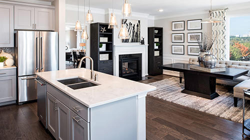 Mount Vineyard Townhomes by Pulte Homes image 2