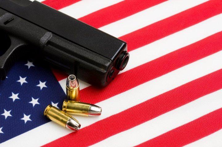 FirearmsInsuranceAgent.com image 2