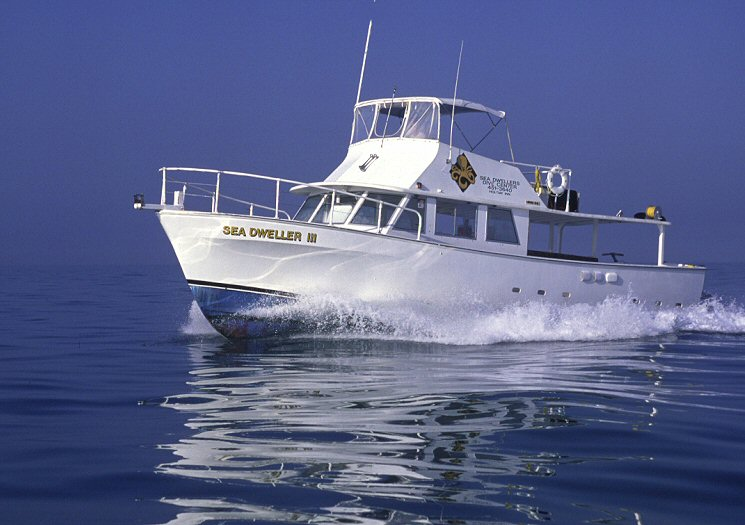 Sea Dwellers Dive Center of Key Largo image 1