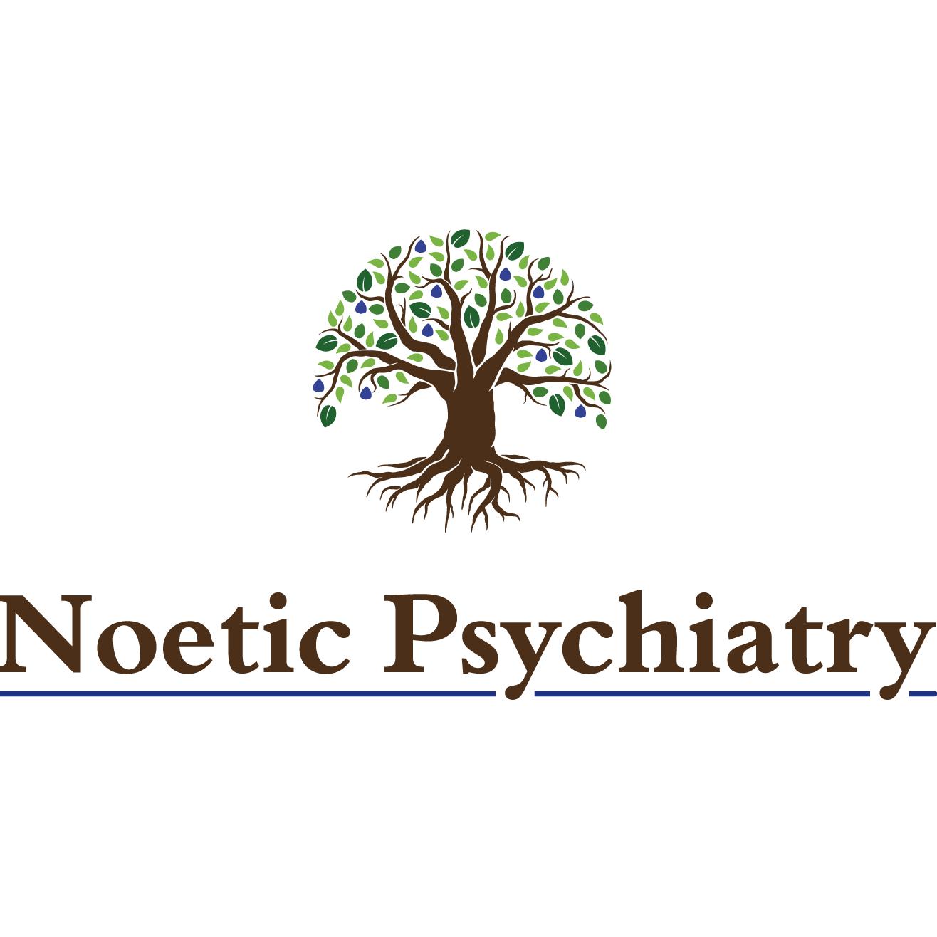 Noetic Psychiatry image 1