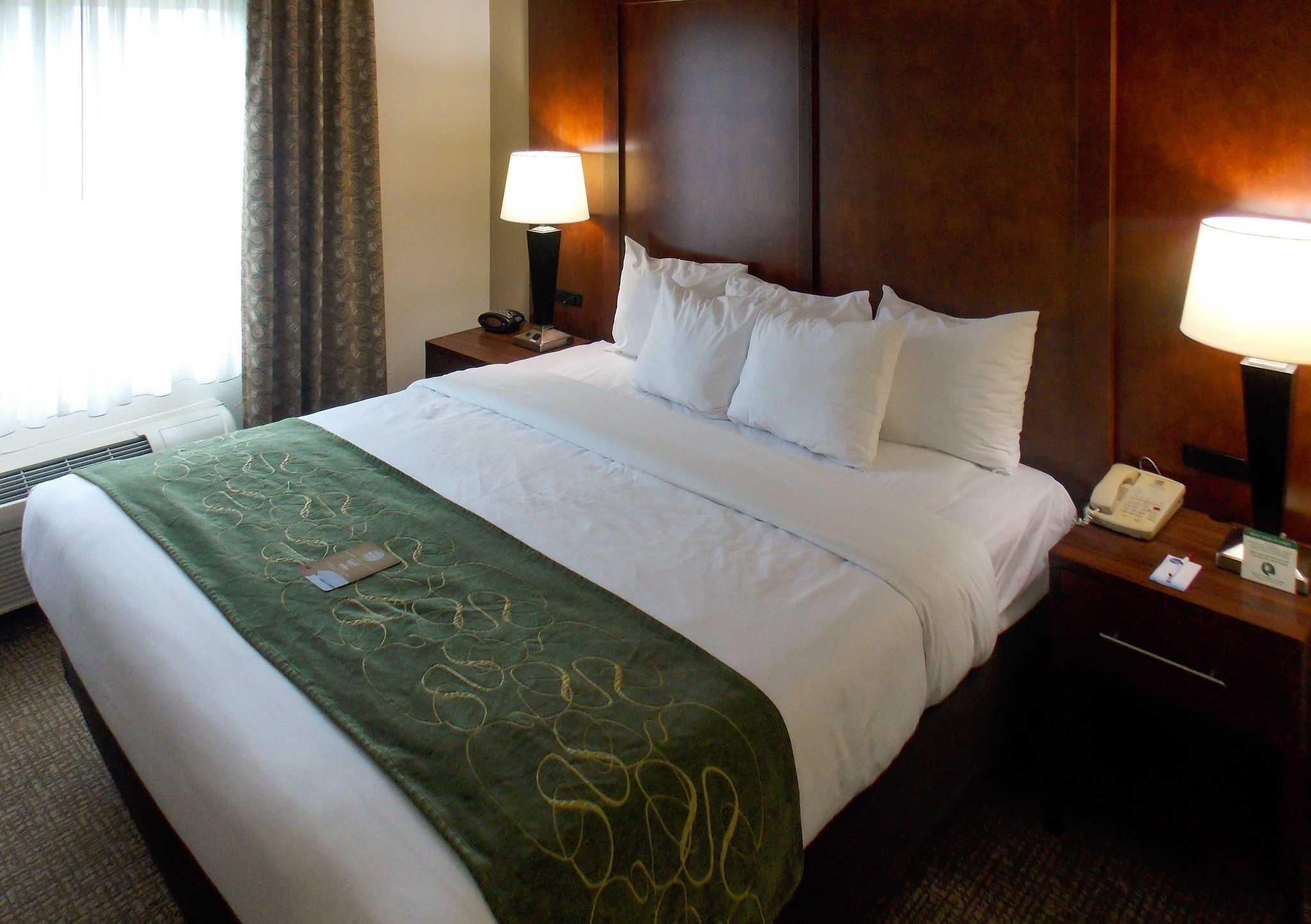 Comfort Suites Inn at Ridgewood Farm image 6