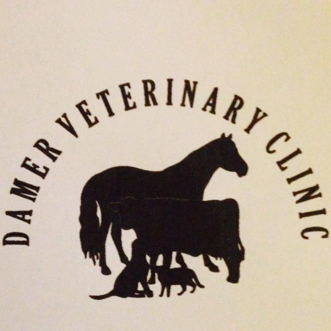Damer Veterinary Clinic