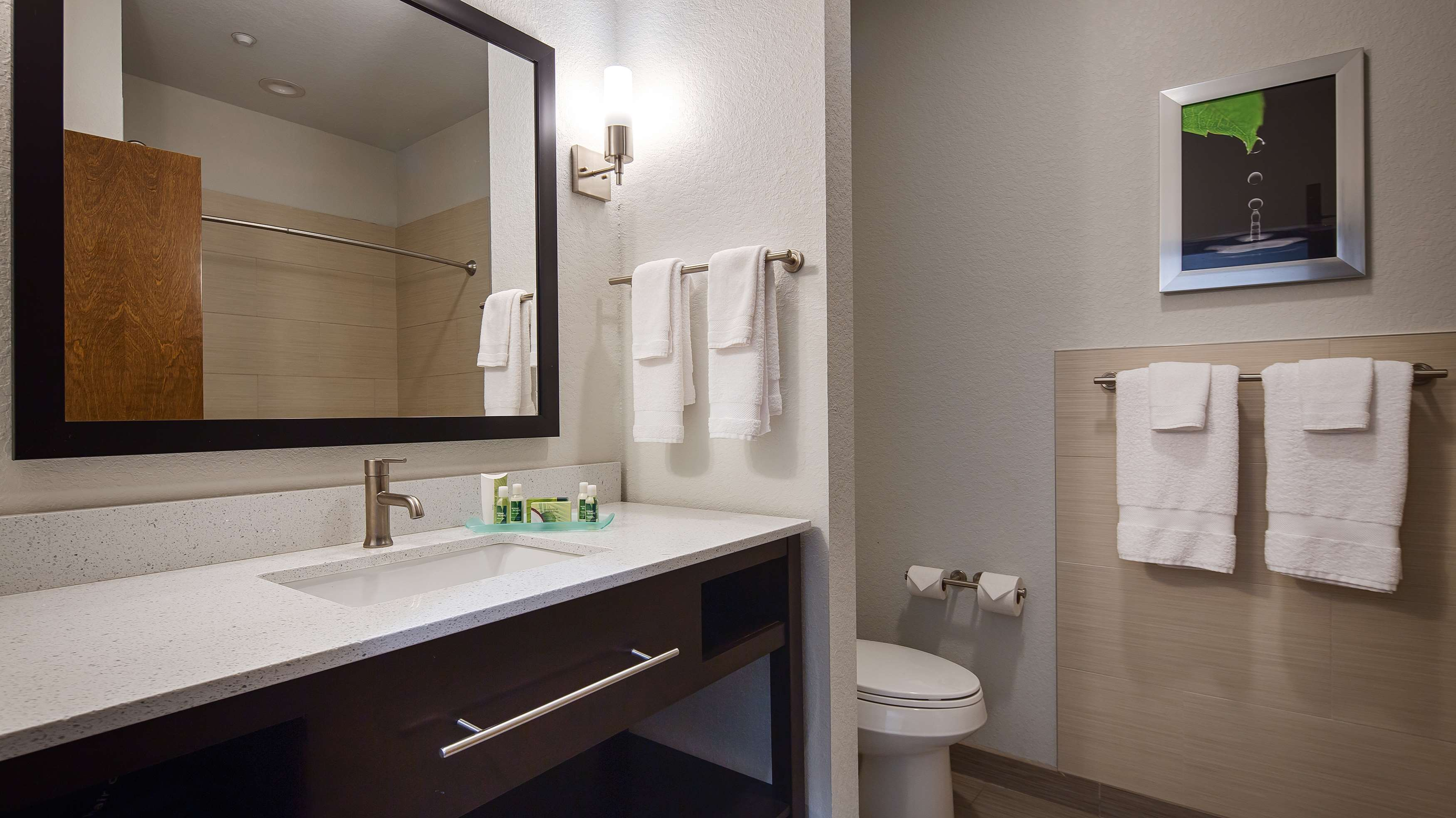 Best Western Plus College Station Inn & Suites image 23