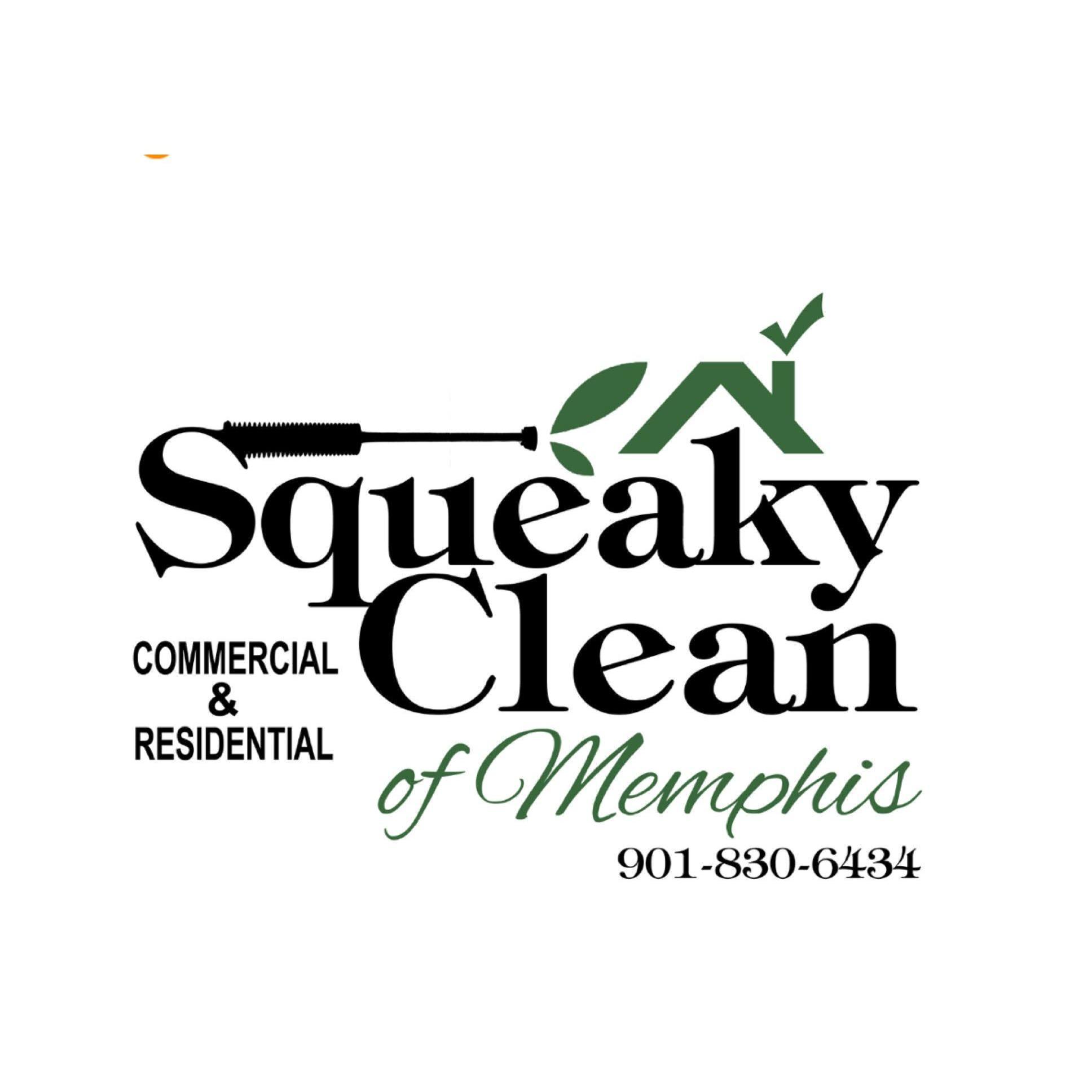 Squeaky Clean of Memphis