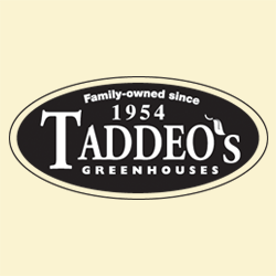 Taddeo's Greenhouses