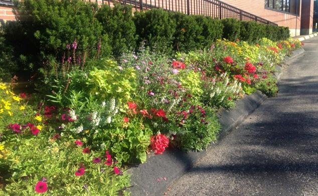 Currier Landscaping image 1