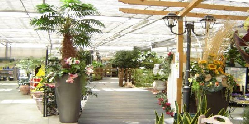 Ikebana Green Garden