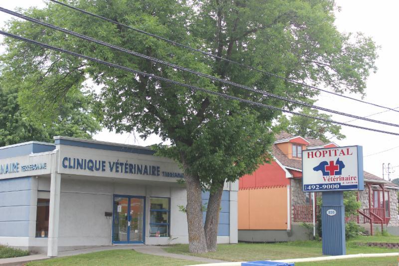 Hôpital Vétérinaire de Terrebonne à Terrebonne