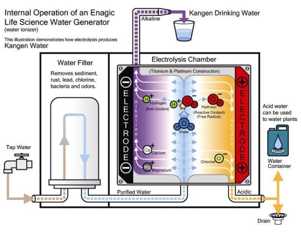 Alkaline Water Connection image 15