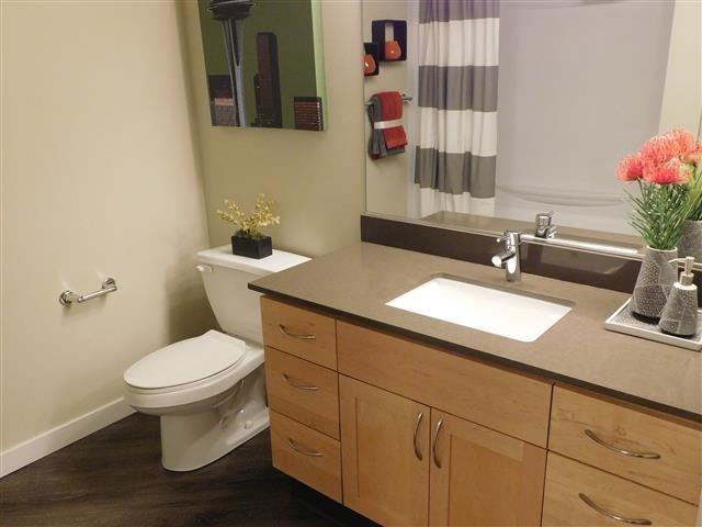 Tera Apartments image 6
