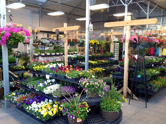 Mile High Ace Hardware & Garden image 4