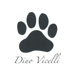 Dino Vicelli Private Eye image 5