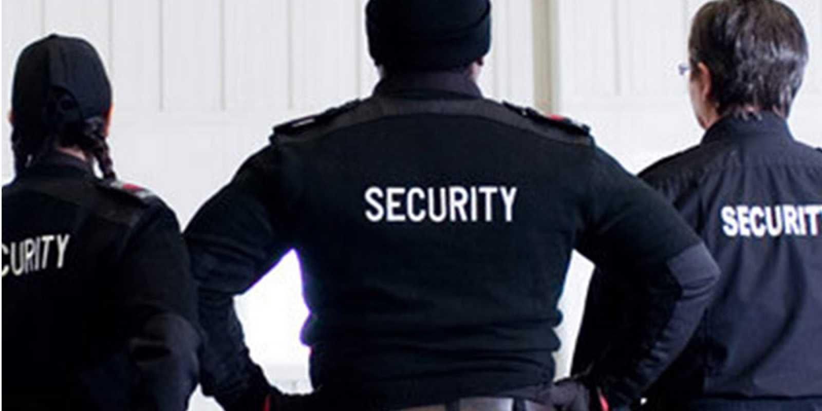 Alternative Protective Services Inc image 6