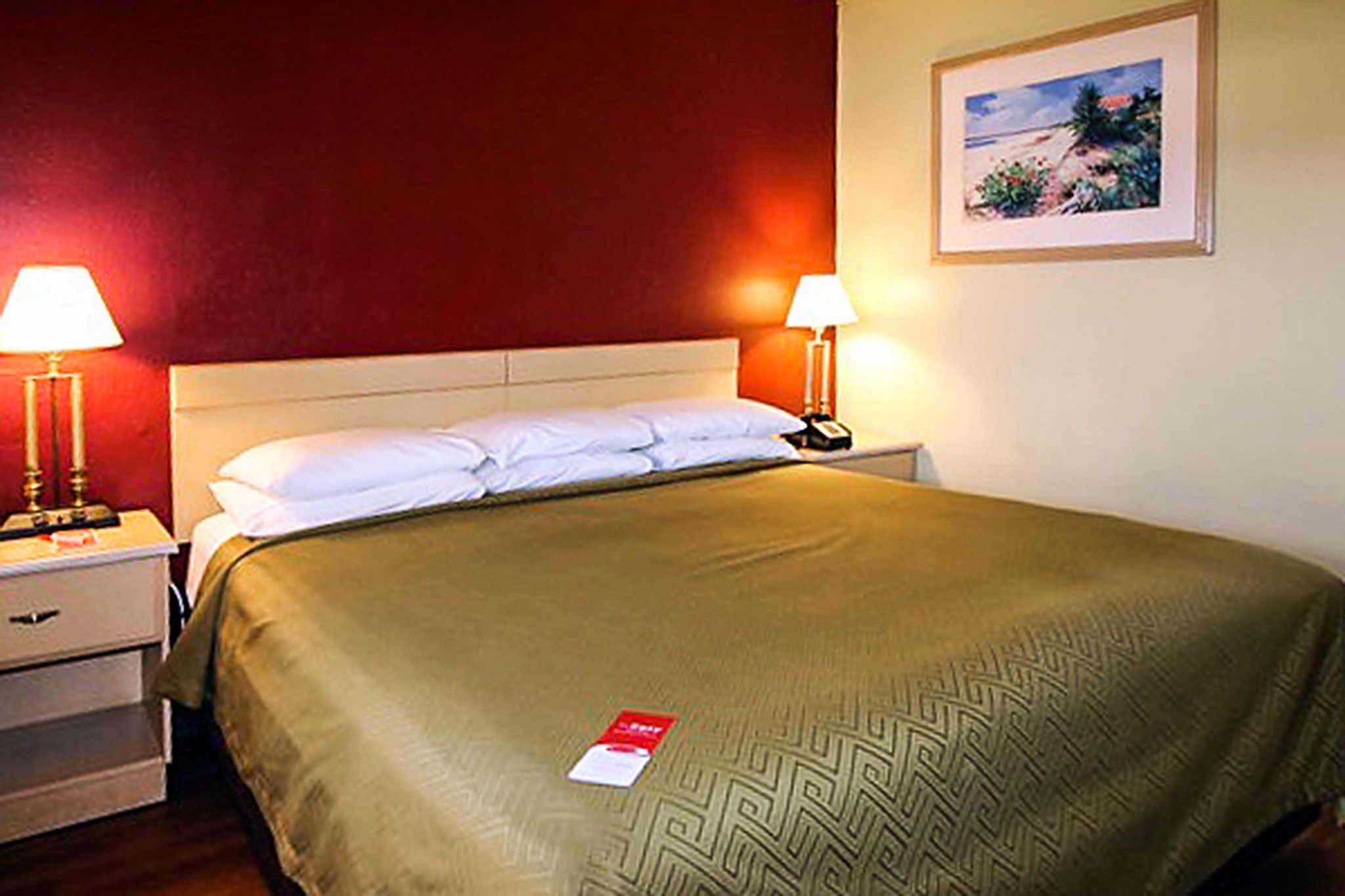 Econo Lodge  Inn & Suites Maingate Central image 9