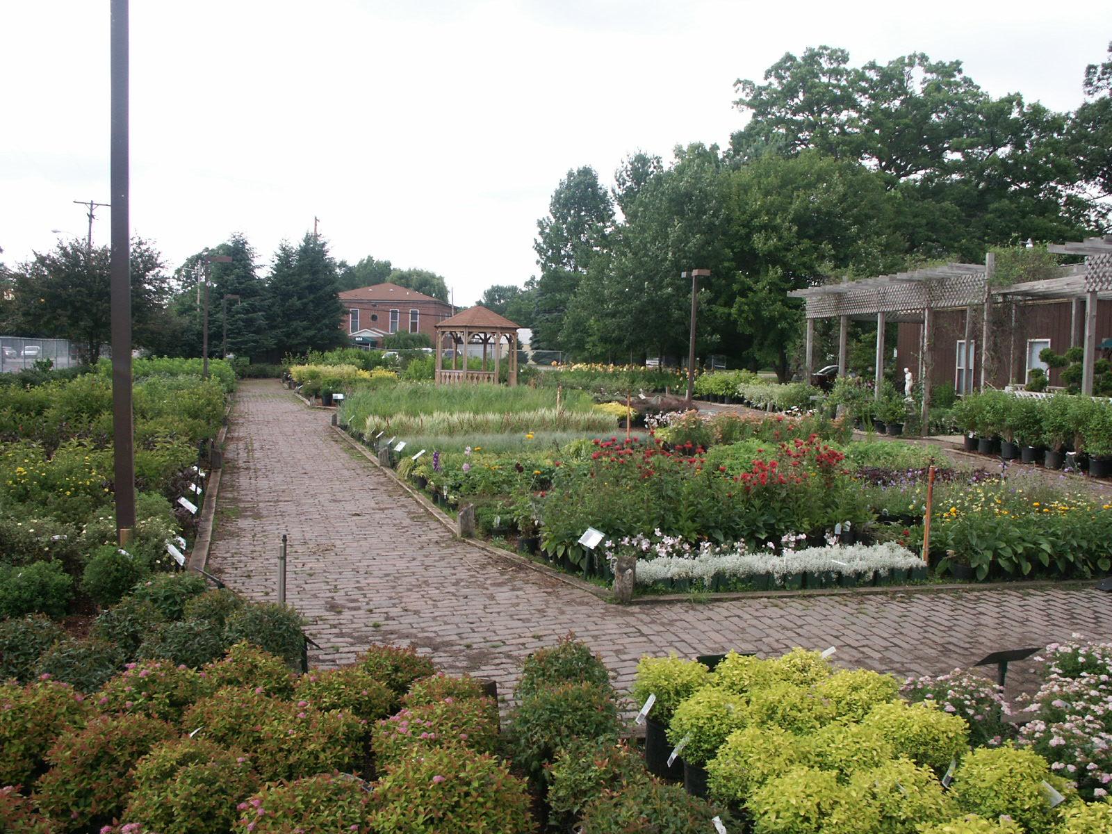 Chapman's Nursery & Garden Center image 0