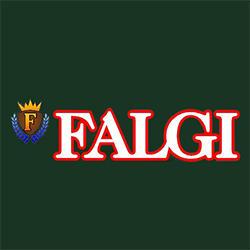 Falgi Carting Inc