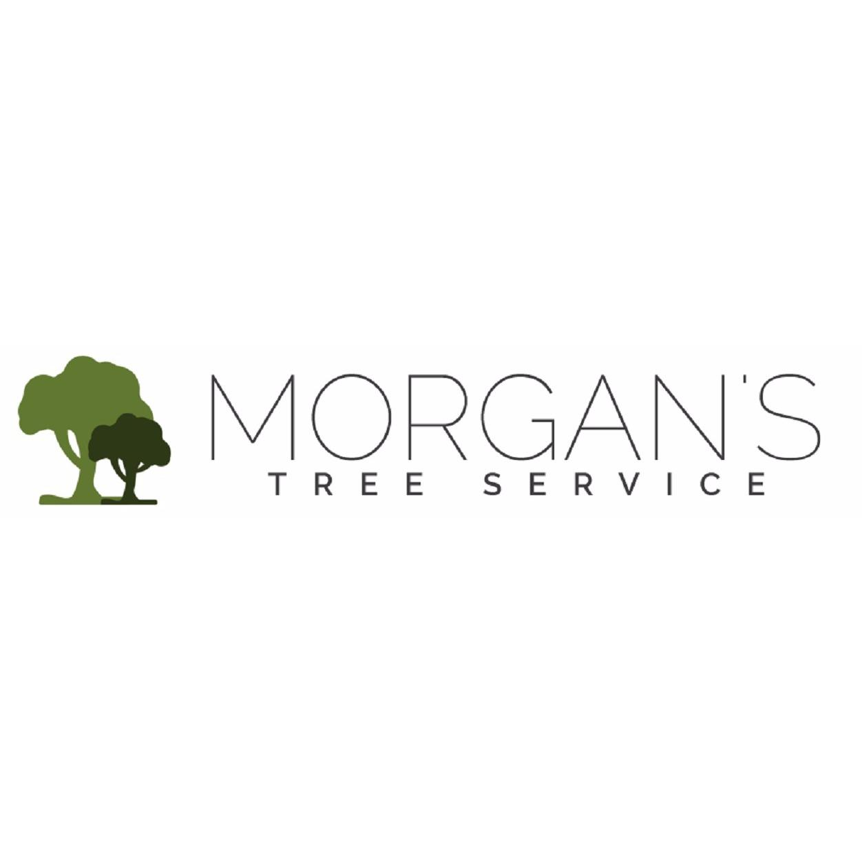 Morgan's Tree Service