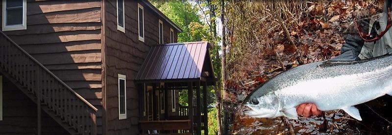 Fox Hollow Lodge image 9