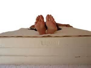 Latexpedic LA Los Angeles Latex Mattress image 7