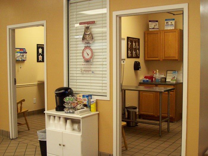 VCA Avalon-Heart of Gwinnett Animal Hospital - CLOSED image 0