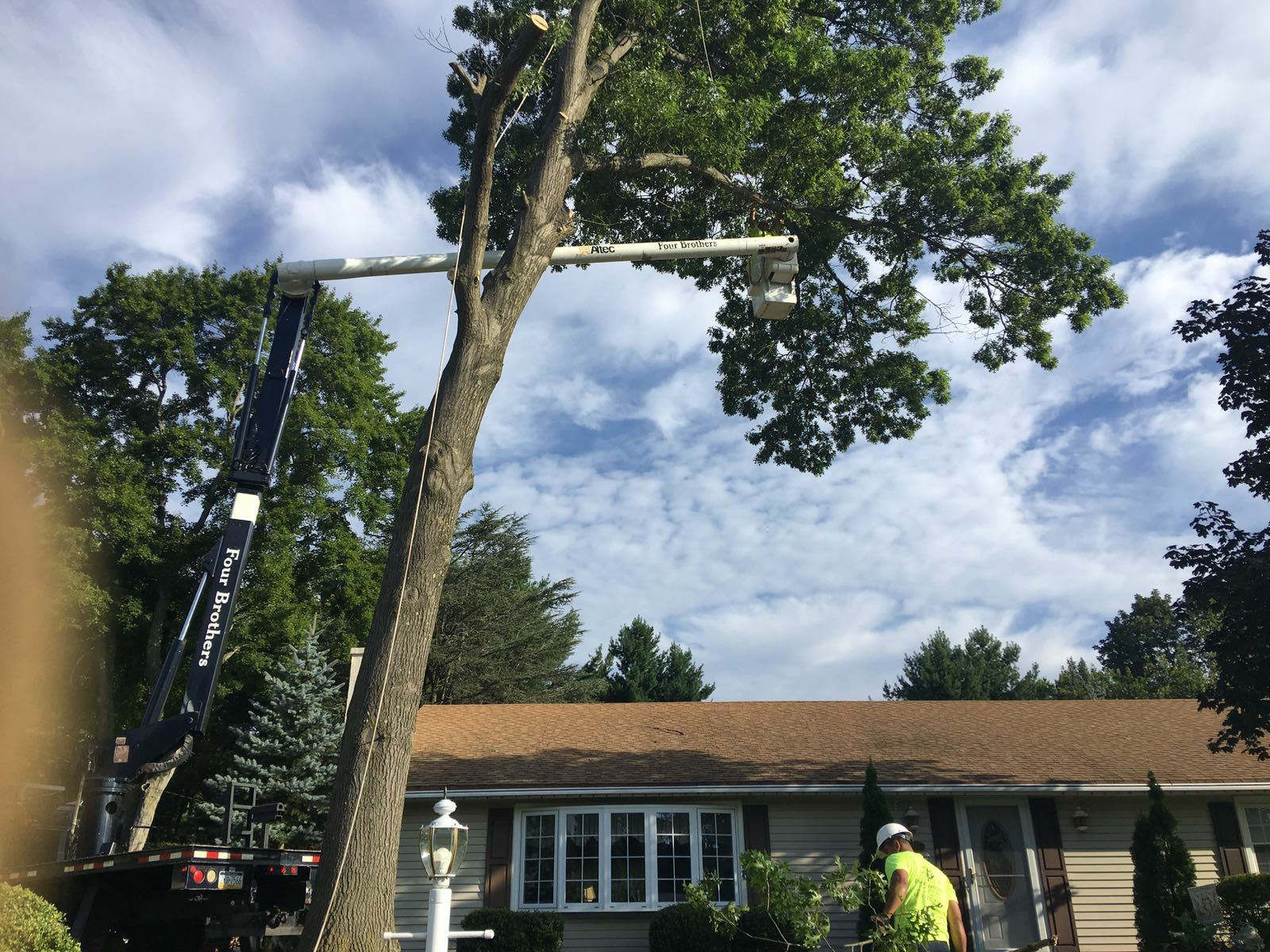 Four Brothers Tree Service Inc. image 31