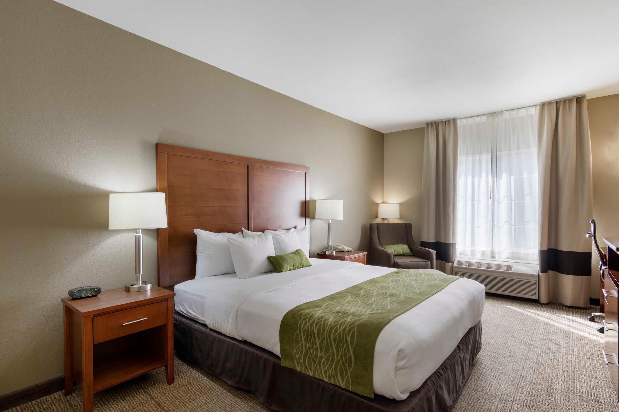 Comfort Inn & Suites Sacramento - University Area image 0