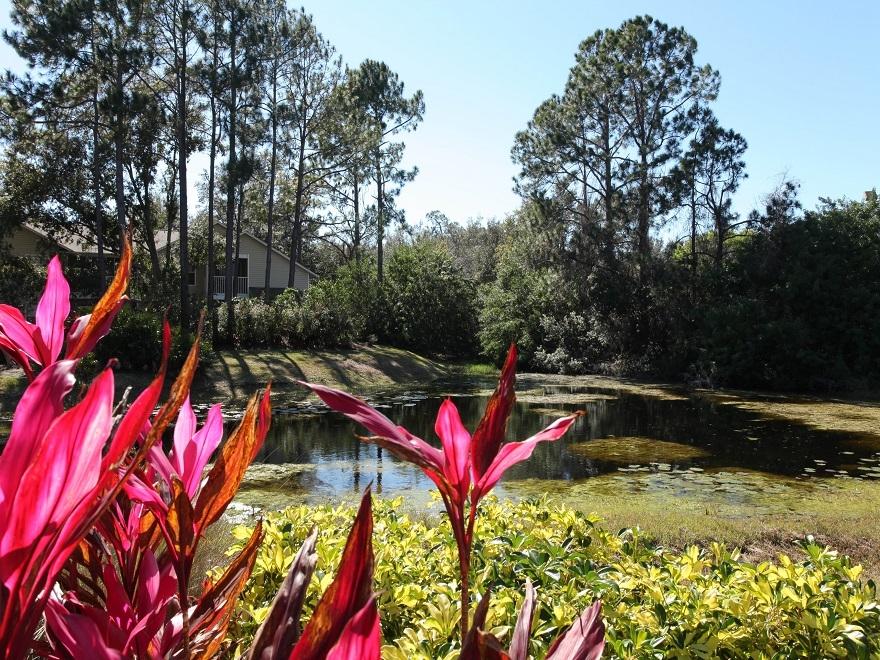 Madison Oaks image 3