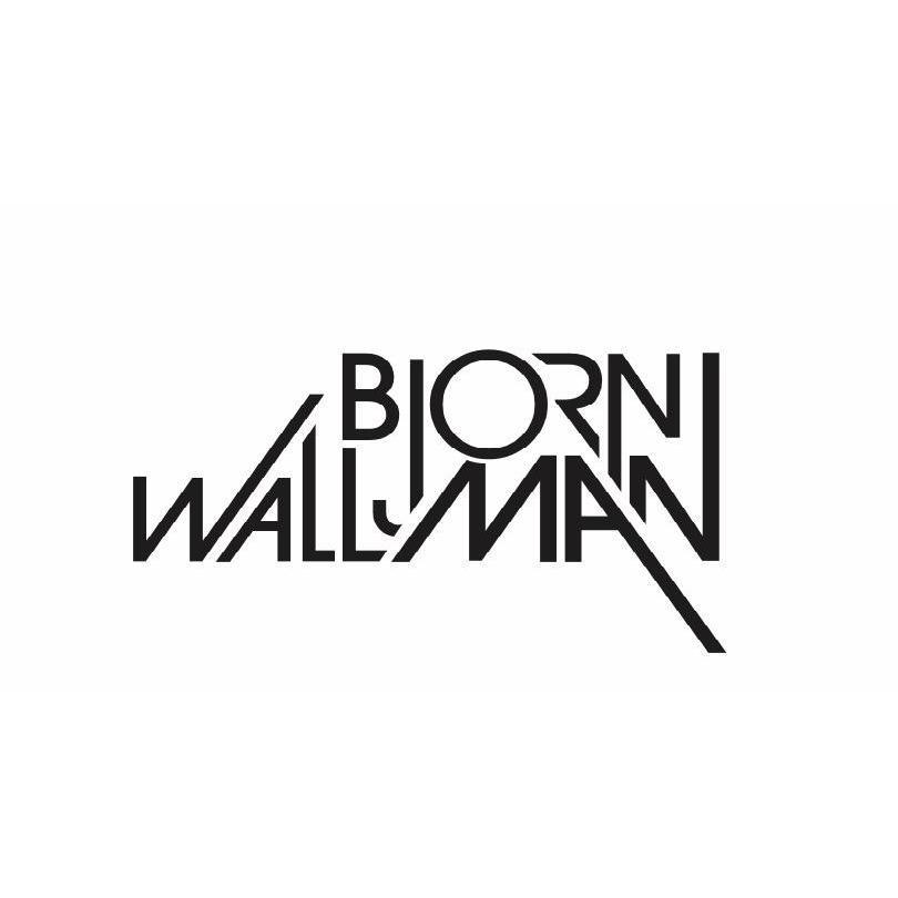 Bjorn Wallman Web Design Las Vegas