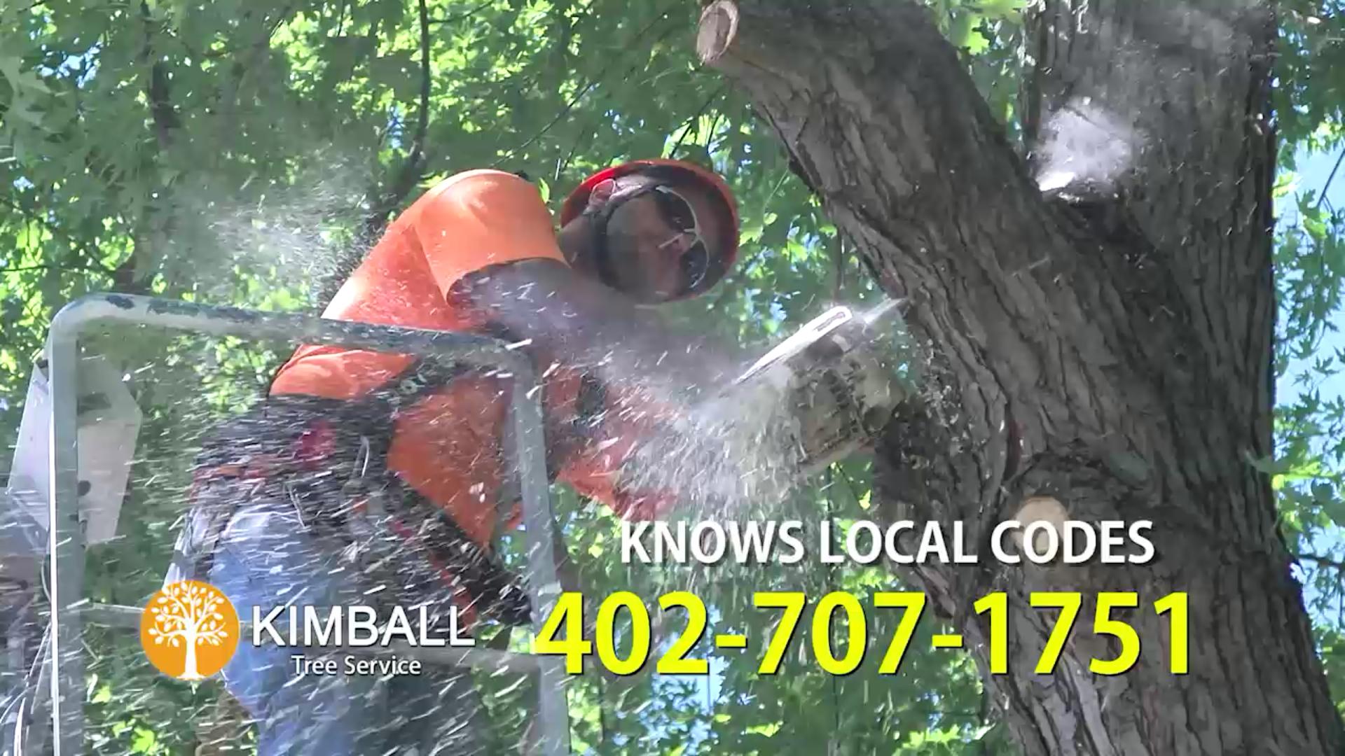Kimball Tree Service
