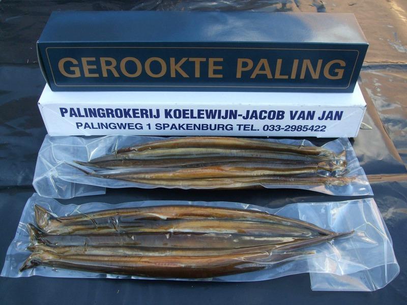 Palingrokerij Jacob van Jan Koelewijn