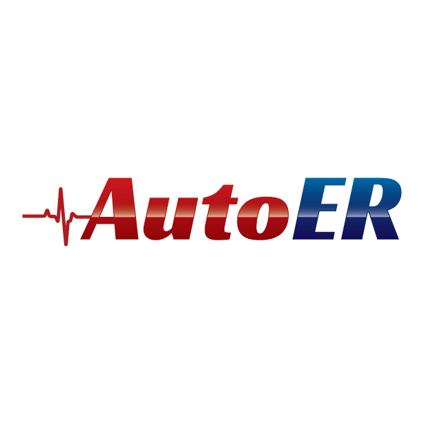 Florida Collision at the Auto ER