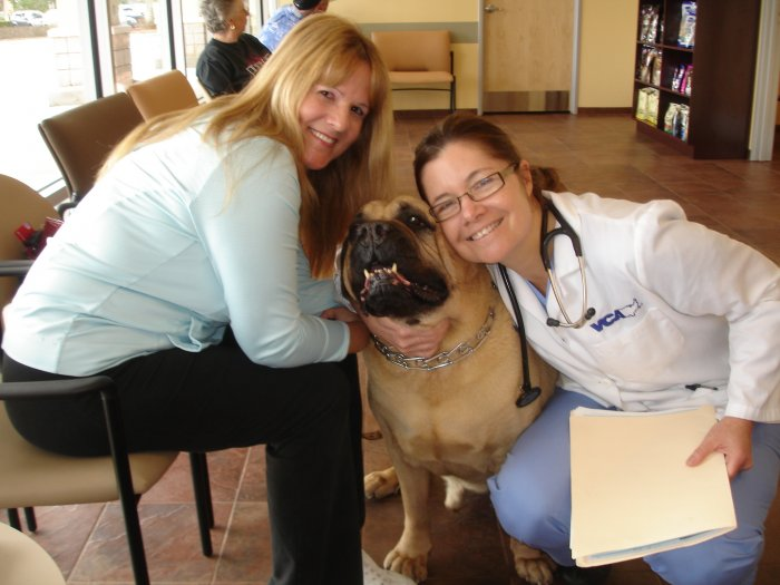 VCA Rock Creek Animal Hospital image 0