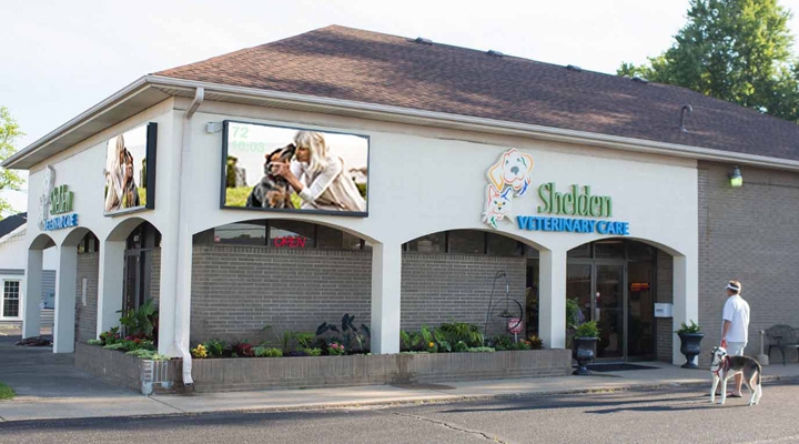 VCA Shelden Animal Hospital image 0