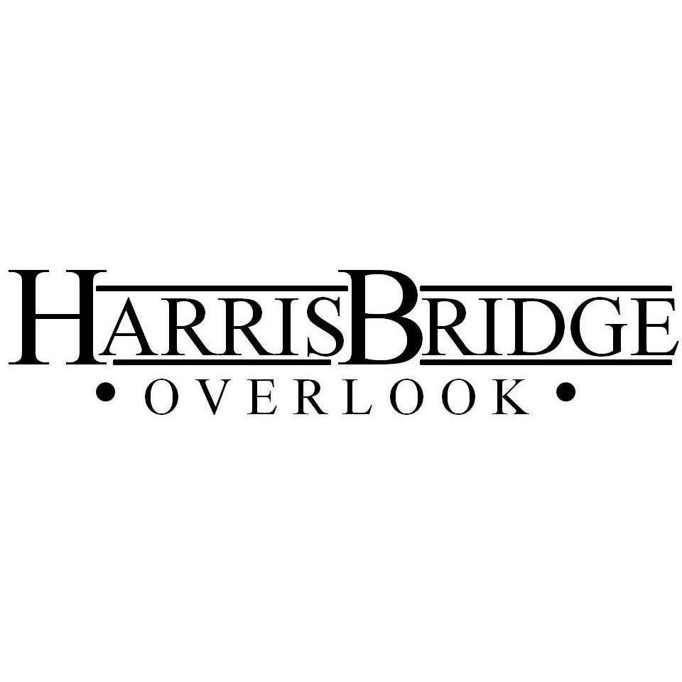 Harris Bridge Overlook image 29