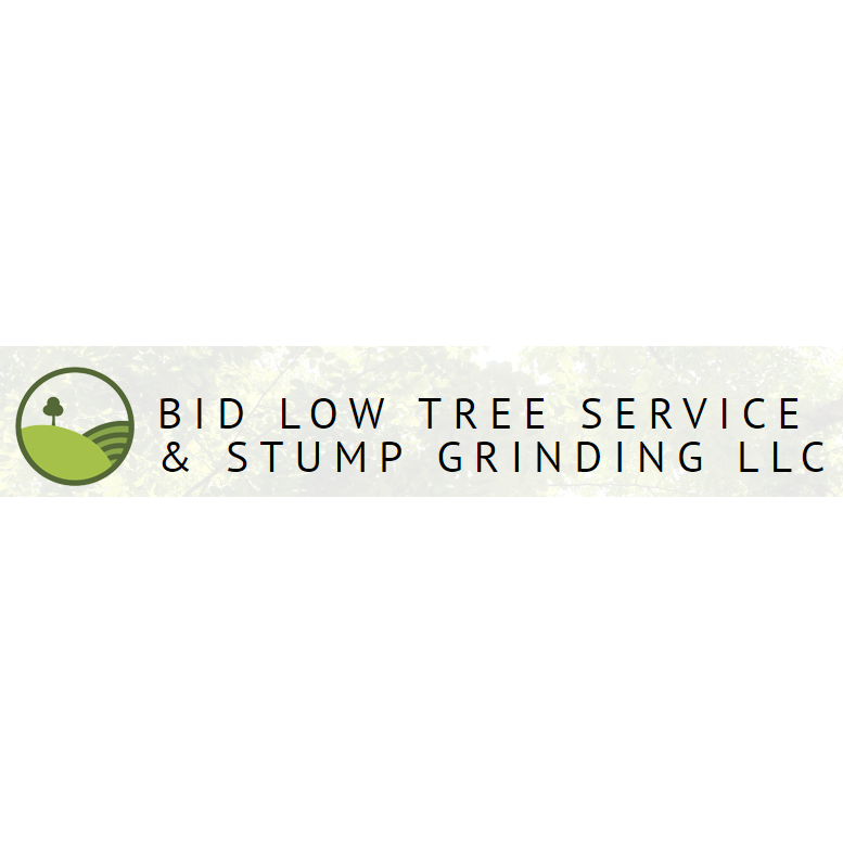 Bid Low Tree Service & Stump Grinding LLC