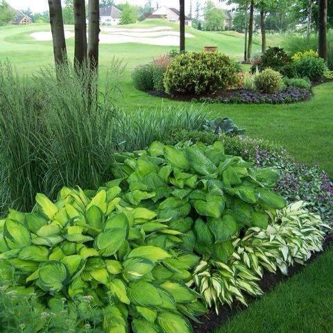K work landscaping llc in roanoke tx 76262 citysearch for Home turf texas landscape design llc