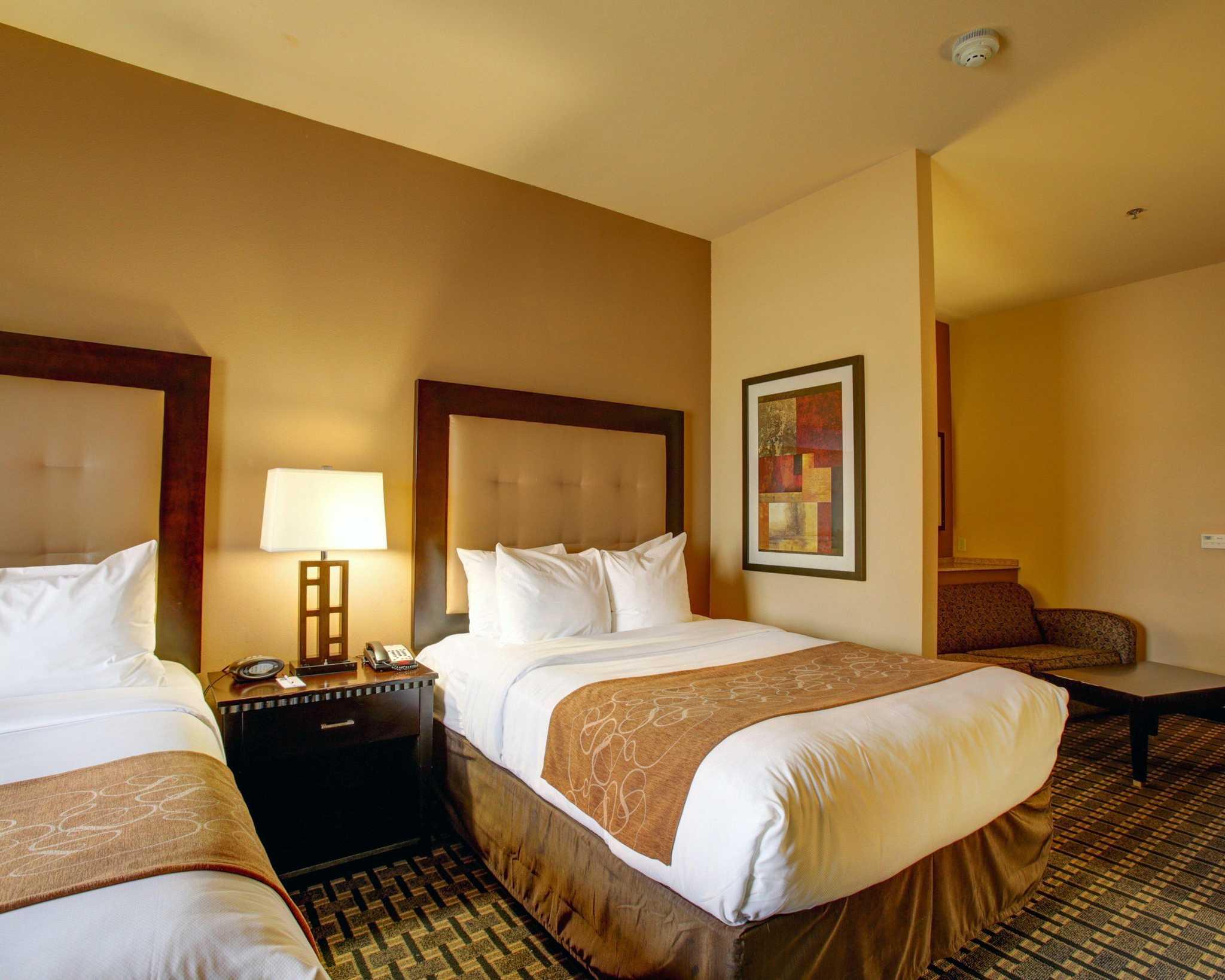 Comfort Suites Buda - Austin South image 6