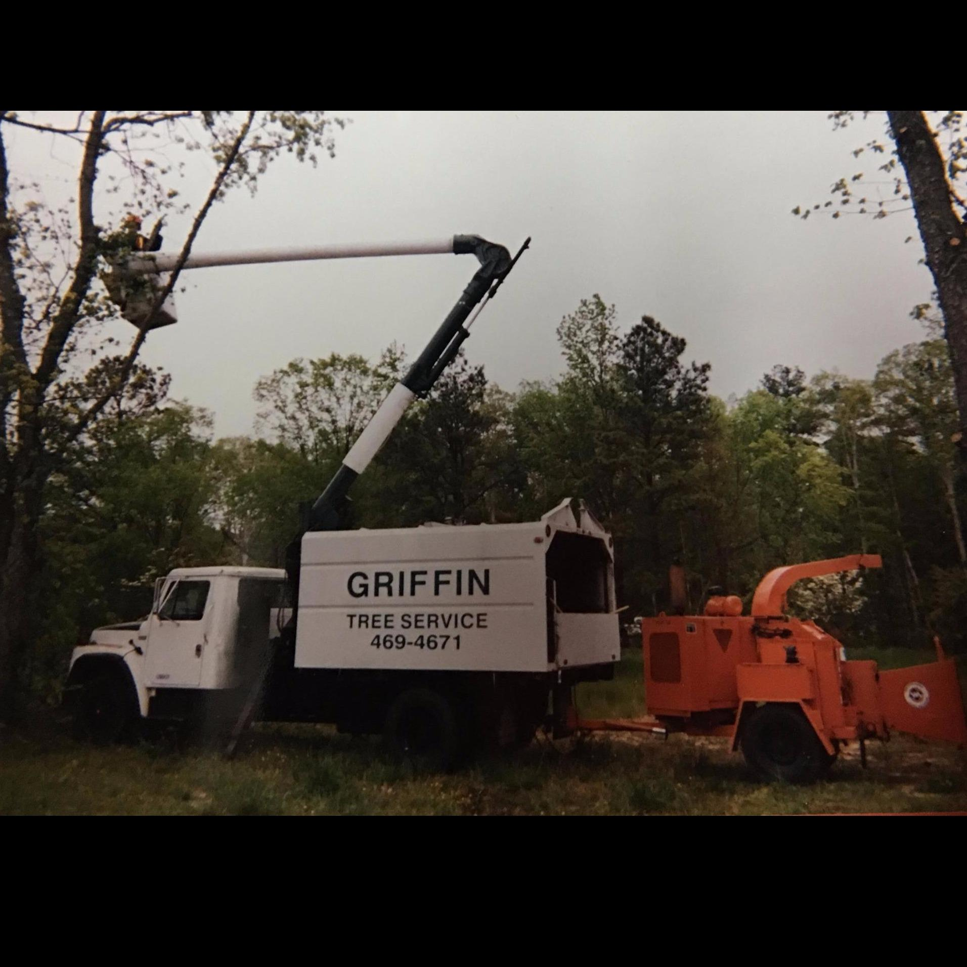 Griffin Tree Service image 0