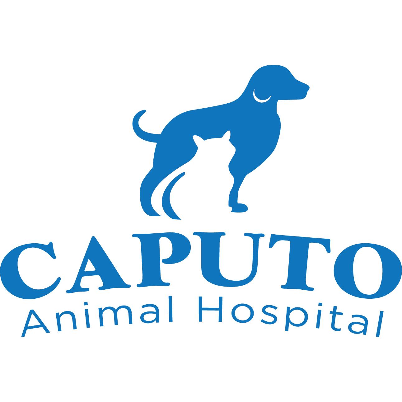 Caputo Animal Hospital