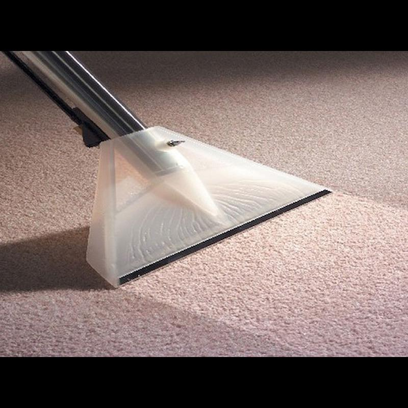 Taylor's Carpet Cleaning