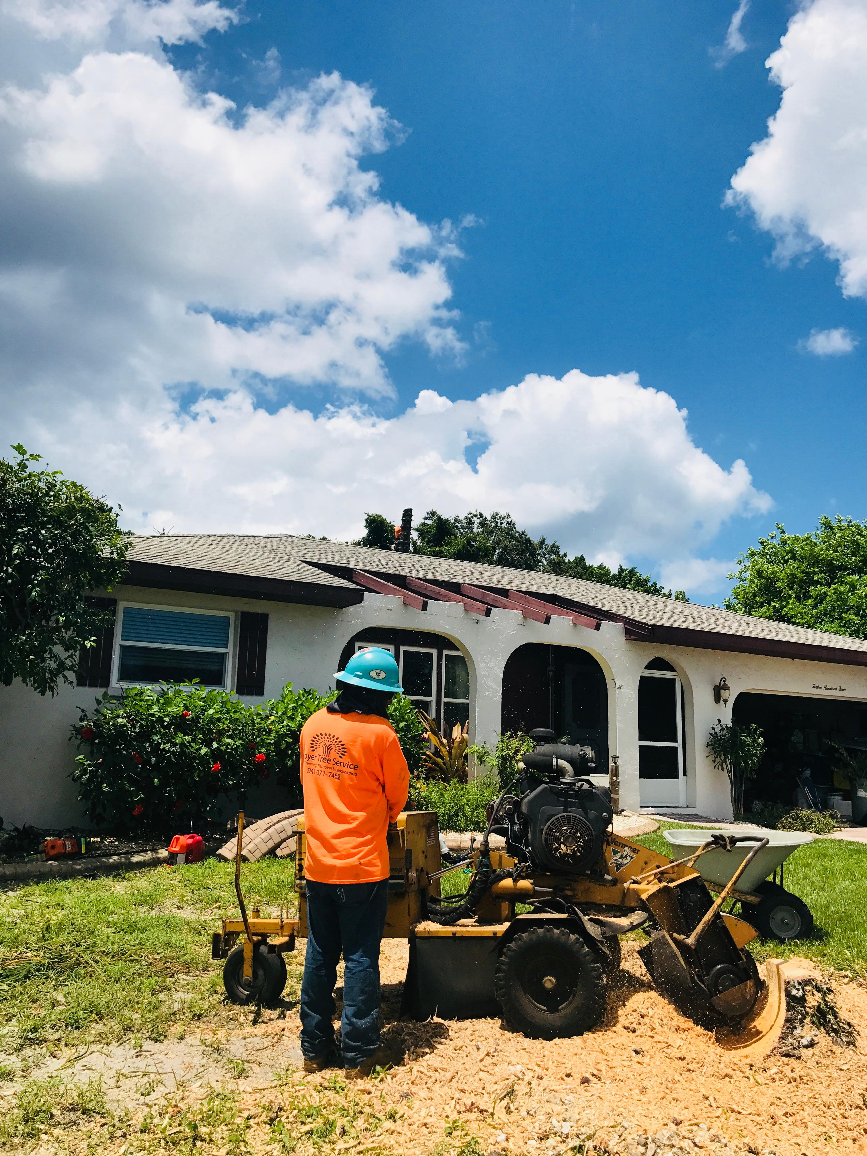 Troyer Tree Service image 0