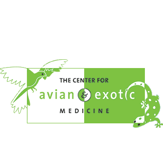 The Center For Avian & Exotic Medicine