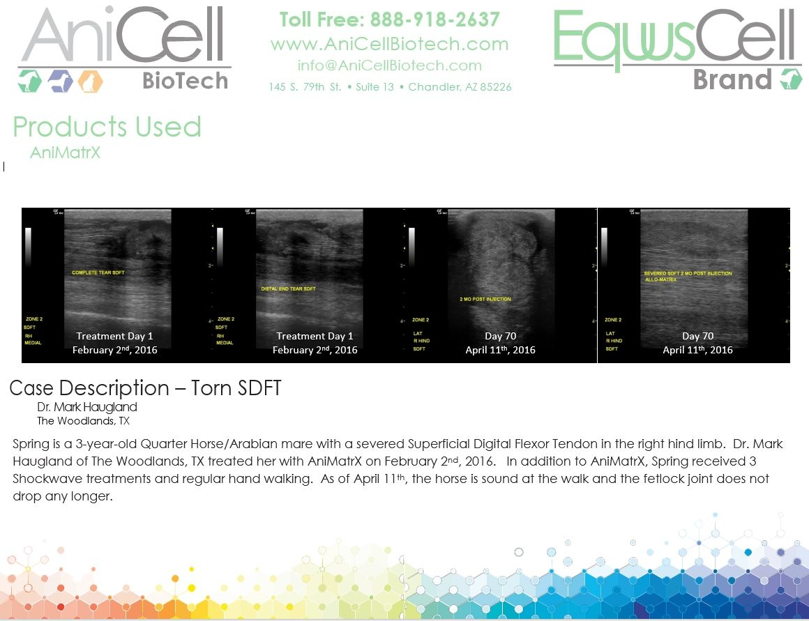 AniCell Biotech, LLC image 5