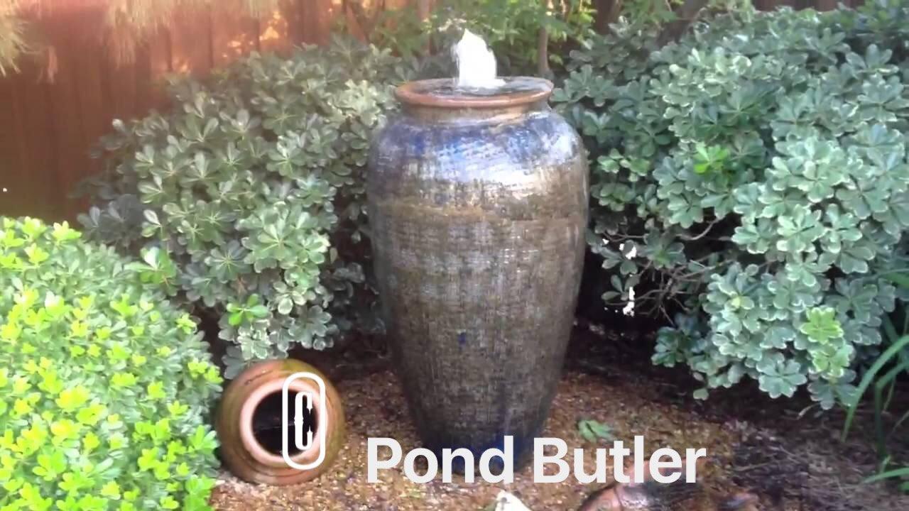 Pond Butler image 0