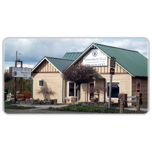 Veterinarian in OR Sandy 97055 Barlow Trail Veterinary Clinic 39231 Proctor Blvd (503)912-8899