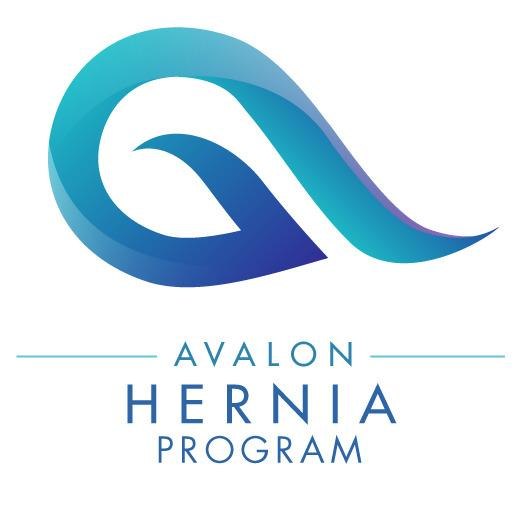 Avalon Hernia image 1