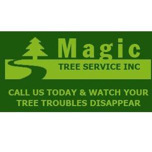 Magic Tree Service Inc image 0