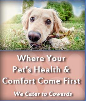 Pet Clinic at Woods Corner - Bruce Radomski DVM image 3