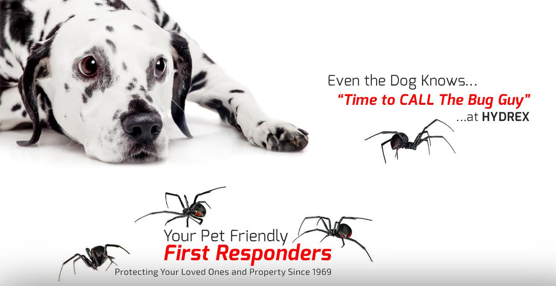 Hydrex Termite & Pest Control image 1