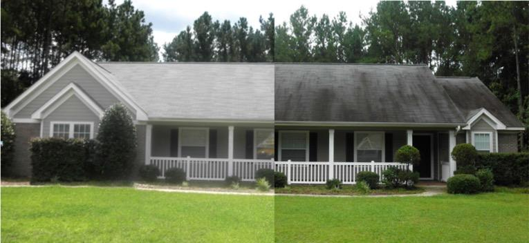 Roof Cleaning Before and After.